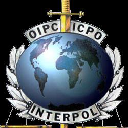 Tweet Leads Interpol to Arrest Journalist